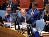 Sweden in the UN Security Council
